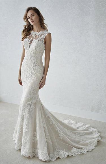 white one (w1) 2018 modelo farena. consulta precio y fotos online